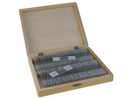 Bresser Preparaty mikroskopowe -  anatomia, zoologia, botanika - 100 sztuk